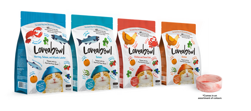 4 for $14.90 bundle with free bowl Loveabowl Cat Kibbles