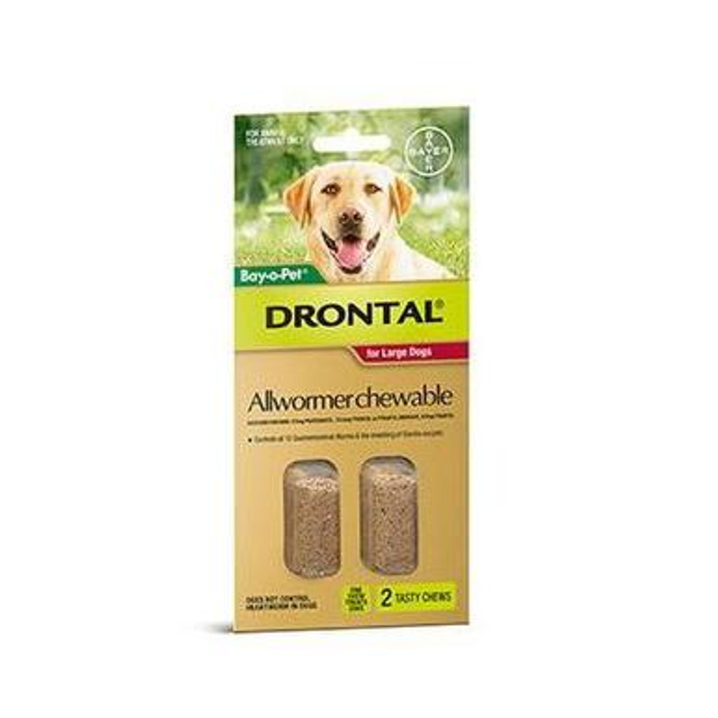 Drontal Allwormer Chews for Dogs up to 77 lbs (up to 35 kg) - 2 Chews