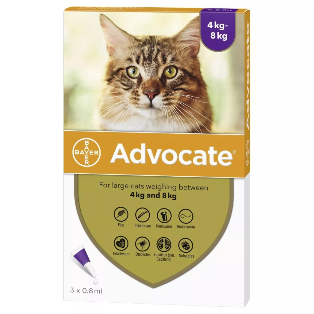 Image of Front of Box for Advocate for Cats over 9 lbs (over 4 kg) - Purple 3 Doses