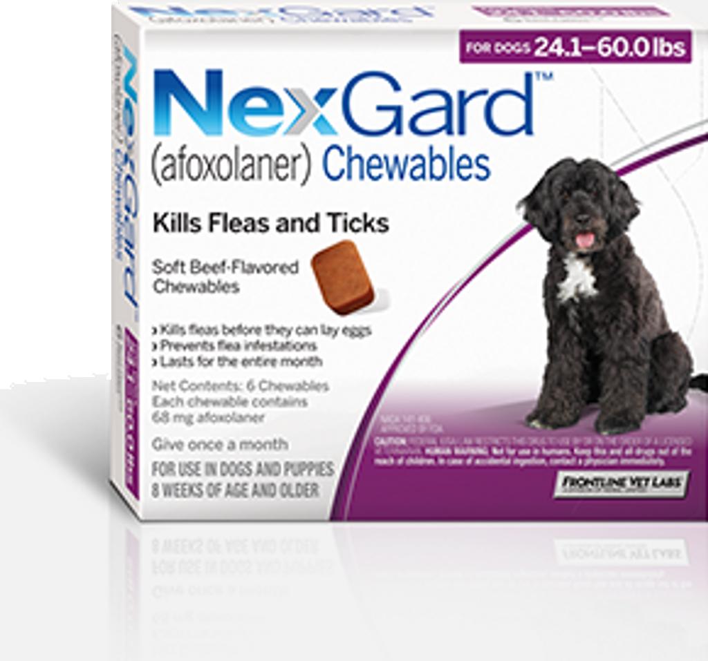 Nexgard For Dogs 241 60 Lbs 3 Pack Sierra Pet Meds