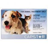 Comprimés de traitement contre les puces Capstar pour petits chiens et chats jusqu'à 11 kg (25 lb) - Bleu 6 comprimés