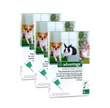 Advantage for Small Dogs and Cats up to 9 lbs (up to 4 kg) - Green 12 Doses