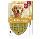 Bild av Front of Box for Advocate for Dogs 20-55 lbs (10,1-25 kg) - Röd 12 doser