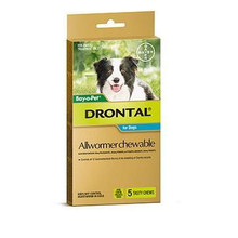 Drontal Allwormer Chews for Dogs up to 22 lbs (up to 10 kg) - 5 Chews