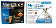 NexGard and Heartgard Combo for Dogs 10.1-24 lbs (up to 10 kg) - 6 Month Bundle
