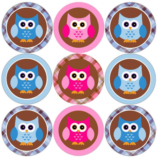 Sticker Stocker 144 Pink and Blue Owl 30mm Round Childrens Reward Stickers for Teachers, Parents and Party Bags