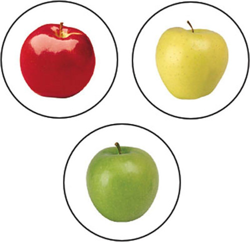 Trend Enterprises Inc 800 Fresh Apples superSpots chart reward Stickers