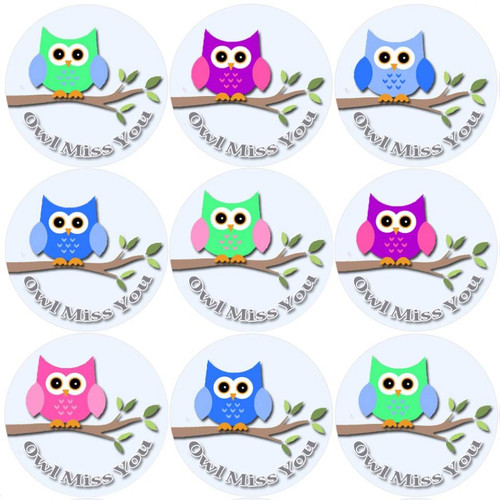 Sticker Stocker 144 Owl Miss You - End of Term Year School Leavers Teacher Reward Stickers Size 30 mm
