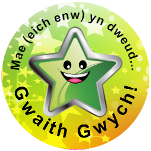Sticker Stocker 144 Personalised Welsh Superstar 30mm Reward Stickers for School Teachers, Parents and Nursery