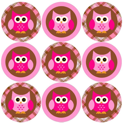 Sticker Stocker 144 Pink Owl 30mm Round Childrens Reward Stickers for Teachers, Parents and Party Bags
