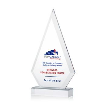 Prism Acrylic Award