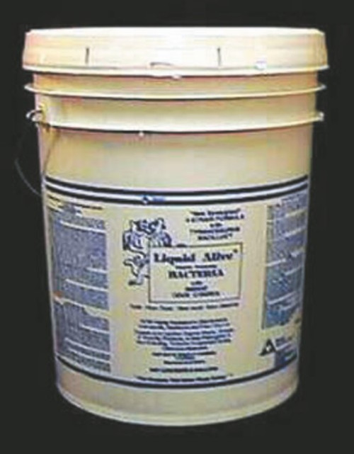 CLEANER LIQUID ALIVE ENZYM 4-STRAIN BACTERIA 5 GALLON PAIL