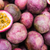 Passion Fruit Liquid