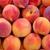 Peach Liquid