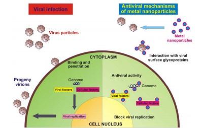 antiviral-activity-colloidal-metals.jpg