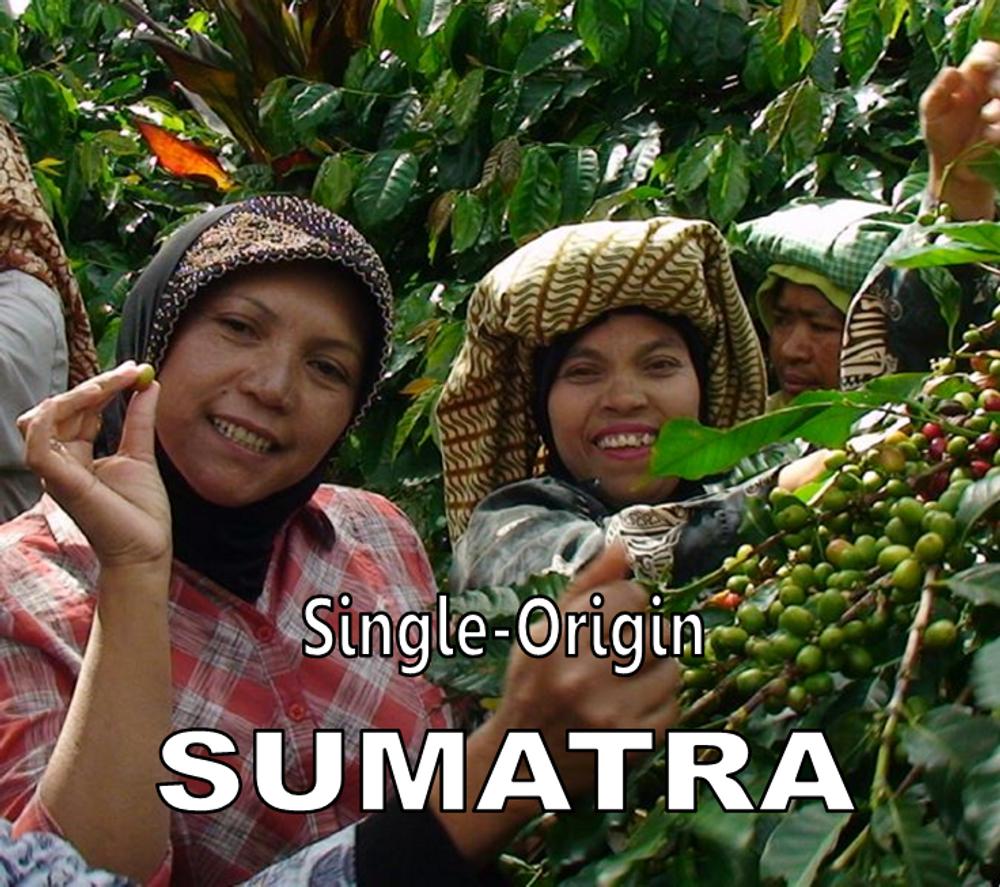 Sumatra Roast - Single Origin - Pesach Run