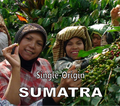 Sumatra Roast - Single Origin
