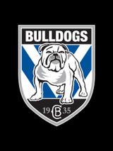 Canterbury Bulldogs NRL Steering Wheel And Seat Belt Comforts