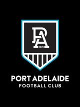 Port Adelaide AFL Steering Wheel And Seat Belt Comforts