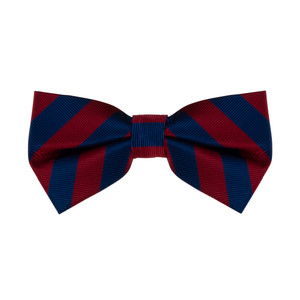 Red & Navy Striped Bow Tie