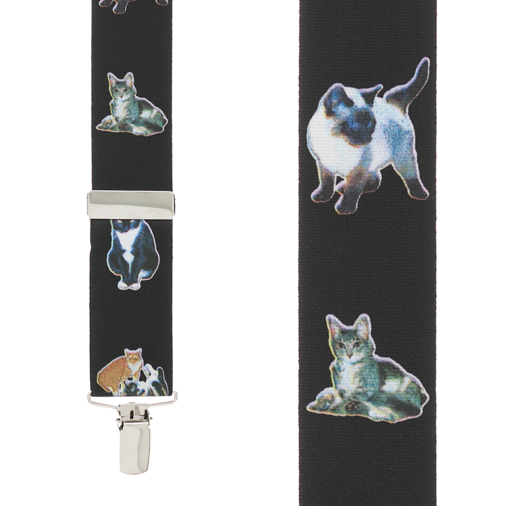 Cat Suspenders - Front View