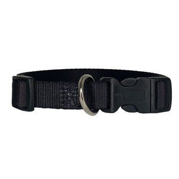 Skull and roses nylon dog collar with easy clip.