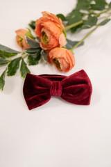 Velvet Groomsmen Bow Tie