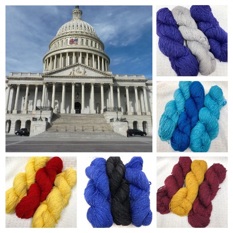 Ladies of the Inaugural - CeCe's Wool Sock Yarn