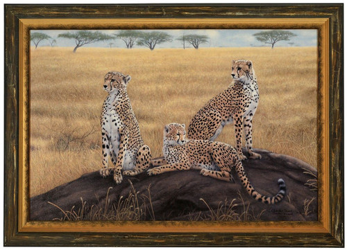 """Charles Frace """"Morning Calm"""" Cheetah Canvas Framed Signed & Numbered L/E"""