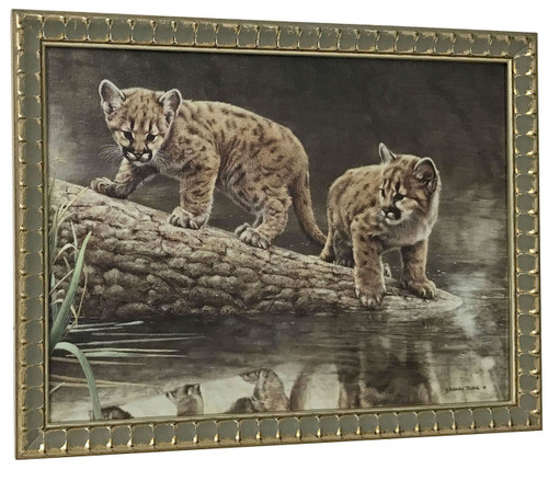 Charles Frace 'Reflections' Cougar Cubs Canvas Framed