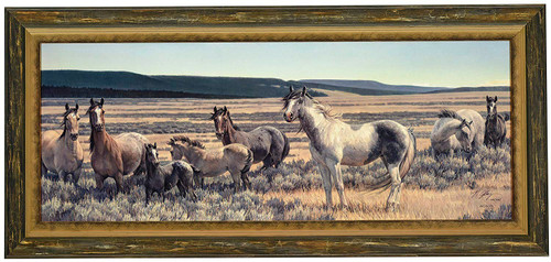 "Nancy Glazier ""Amazing Grays V"" Horses Canvas Framed L/E Signed & Numbered"