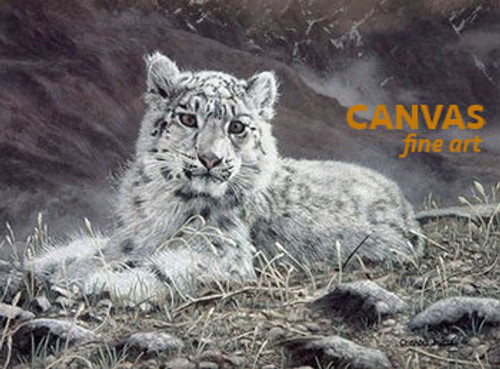 Charles Frace 'Baby Snow Leopard' 9x12 Art Print O/E