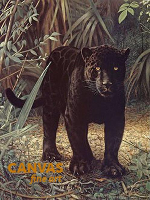 Charles Frace 'Black Jaguar' 9x12 Art Print O/E