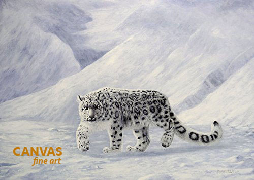 Charles Frace 'Gray Ghost' Snow Leopard Canvas Signed & Numbered L/E