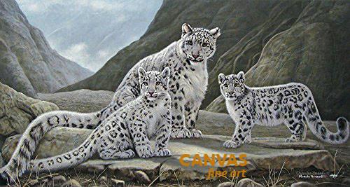 Charles Frace 'Kinship' Snow Leopards Canvas Signed & Numbered L/E