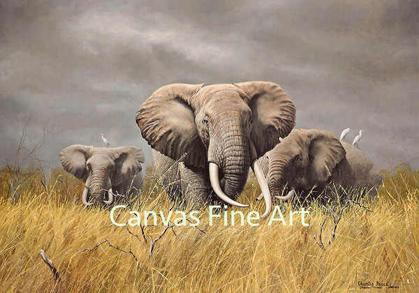 """Charles Frace """"Power of the Serengeti"""" Elephants Canvas Edition Signed & Numbered"""