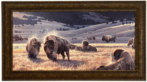"""Nancy Glazier """"The Hidden Valley"""" Buffalo Canvas Framed L/E Signed & Numbered"""