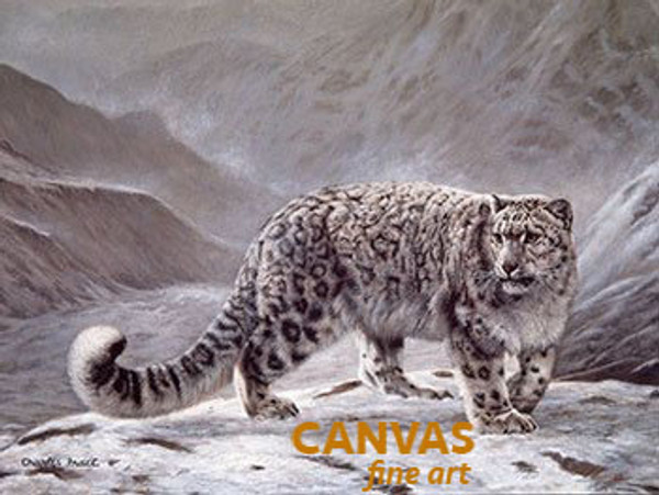 Charles Frace 'Snow Leopard' Fleeting Encounter 9x12 Art Print O/E