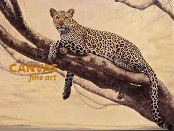Charles Frace 'African Leopard' Canvas Art 9x12 O/E
