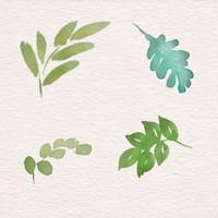 Step by Step Florals Bundle