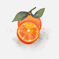 Watercolor Fruit Painting Set