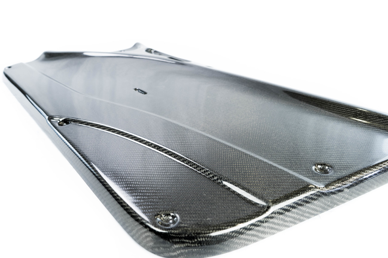 E46 HARD Motorsport Carbon Fiber Door Panel