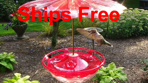 Ships Free! Aspects 434 Rose HummBlossom Hummingbird Feeder with 436 Rain and Ant Guard Accessories Kit