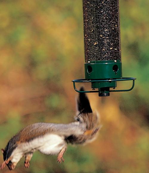 Perfect ... Droll Yankees Yankee Flipper Squirrel Proof Bird Feeder