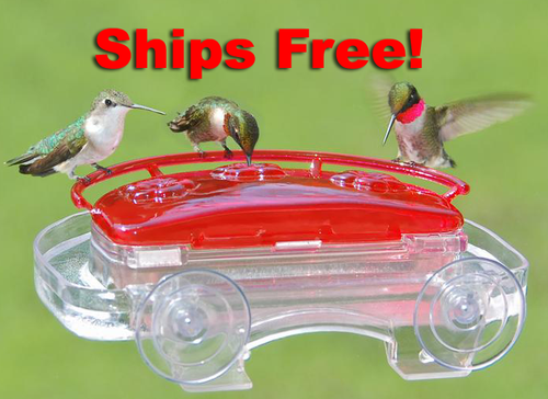 407 Jewel Box Window Hummingbird Feeder
