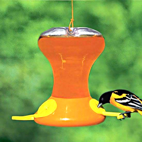 Fliteline Oriole Feeder Junior