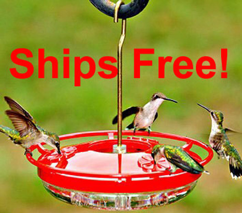 Ships Free! Aspects 430 highview mini hummingbird feeder