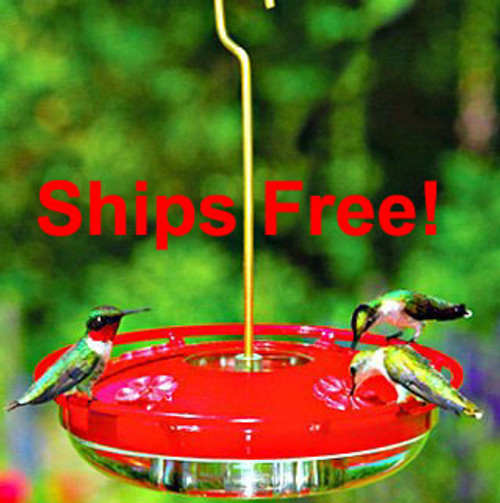 Ships Free! Aspects 429 Hummzinger Highview Hummingbird feeder