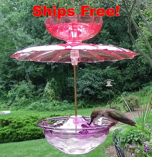 Ships Free! Aspects 433 Plum HummBlossom with Aspects 436 Rain/Ant Guard Accessories Kit
