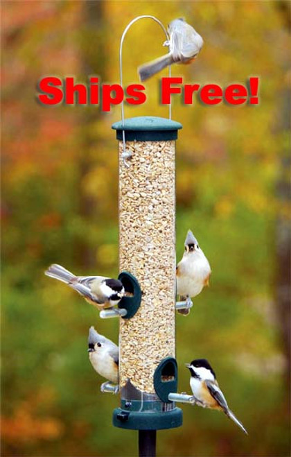 Ships Free! Aspects 424 Quick-Clean Spruce Seed Tube - Medium